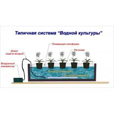 Компрессор SCHEGO OPTIMAL компрессор с регулятором